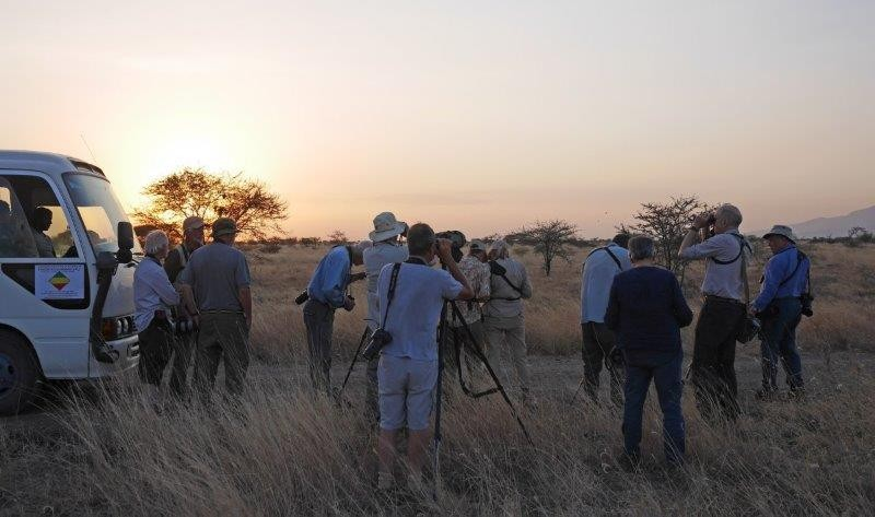 Nearby are the open savanna plains of Awash National Park, where our birding begins at dawn.
