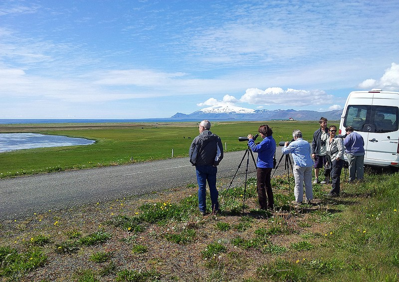 "The Snæfellsjökull glacier in west Iceland, an ancient volcano from where Jules Verne's ""A Journey to the Centre of the Earth"" begins, will be dominating us while we scan a variety of wetlands…"