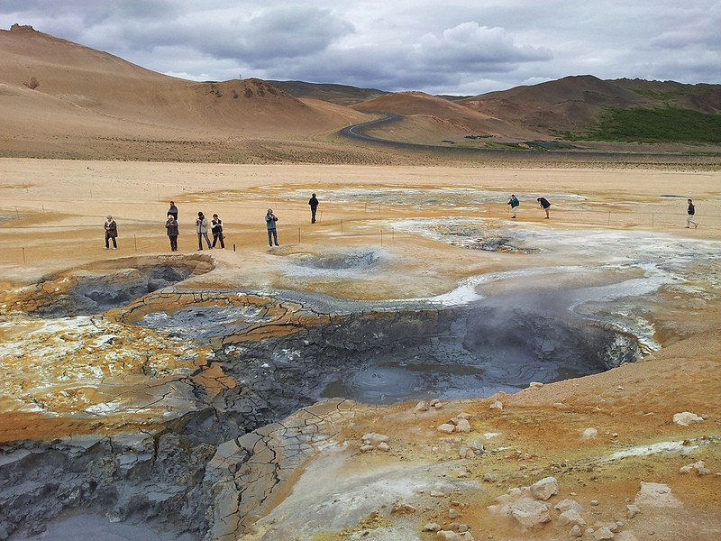 The geology of Iceland is almost as fascinating as its birds, such as these mud pools…