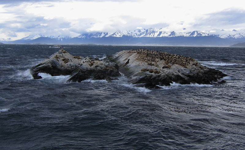 A boat trip down the Beagle Channel allows close approach to islands scattered throughout…