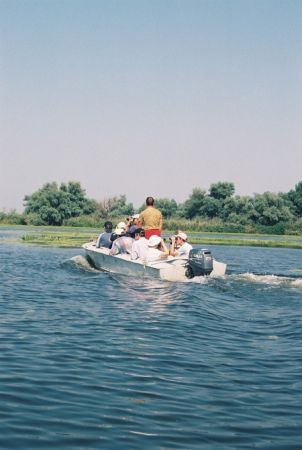 The Danube Delta is the largest wetland preserve in Europe, a wonderland for herons...