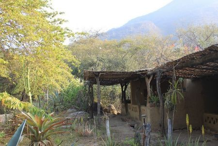 We'll use several lodges located in the birding areas such as Chaparri...