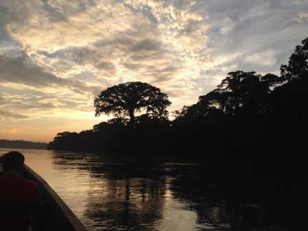 No matter what we see, it's always different, and simply being in Amazonia is an experience in itself.
