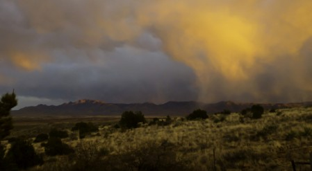 The summer monsoon rains bring the Arizona hills and deserts to life.