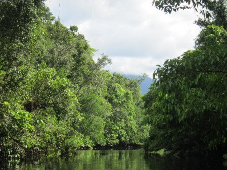 Moving down to the coast and the scenic Daintree River,
