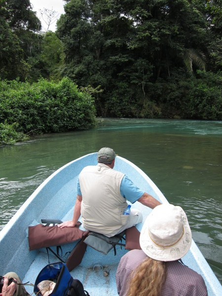 Luxuriant forest and spectacular rivers characterize the Lancadon rainforest (rh),