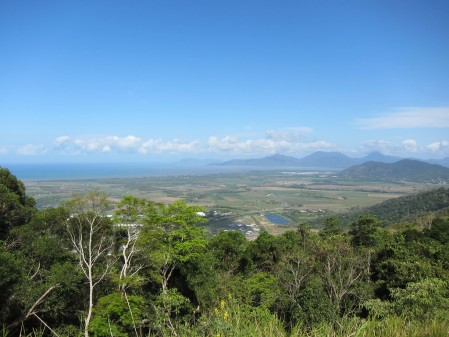 We then will leave the coastline behind, climbing up to the idyllic Atherton Tablelands.